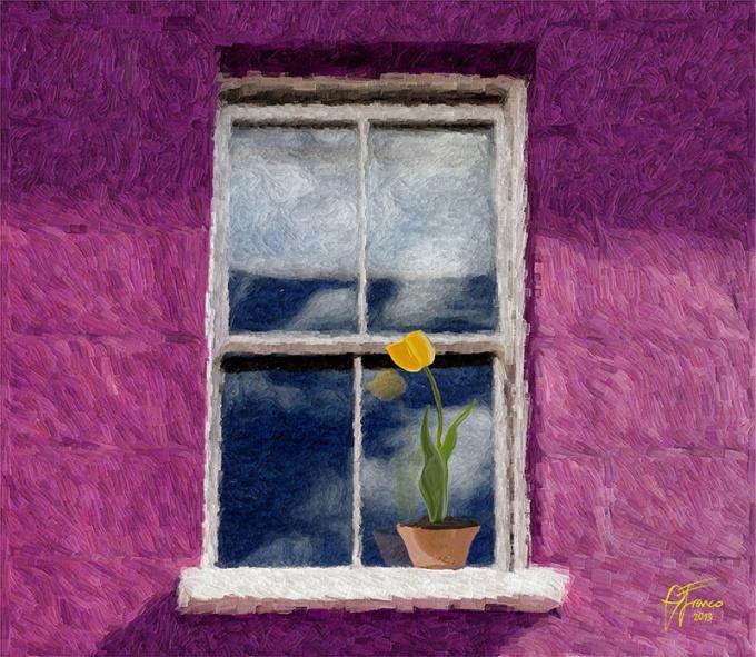 Yellow-Tulip-WEB800